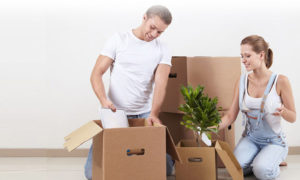 Removalists Coogee